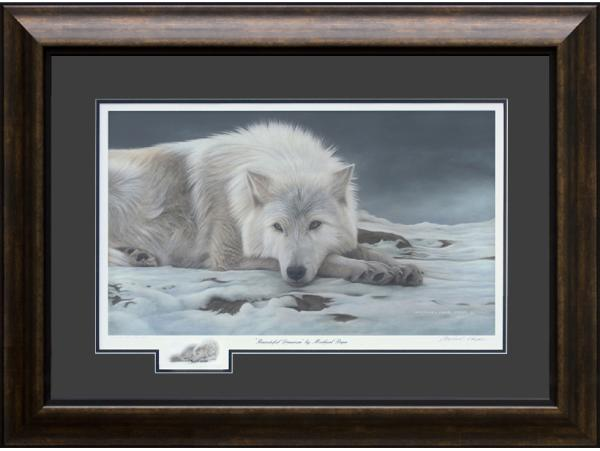 Beautiful Dreamer - Arctic Wolf, limited edition giclée wildlife prints on water colour paper are available by Canadian wildlife artist Michael Pape.