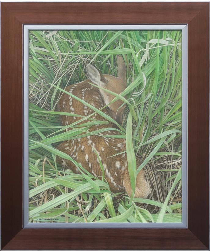 "Dear Innocence, original acrylic on canvas wildlife painting is sold.  This signed, limited edition giclée canvas print is available and looks very similar to the Original Painting ""Dear Innocence"" by Canadian wildlife artist Michael Pape."
