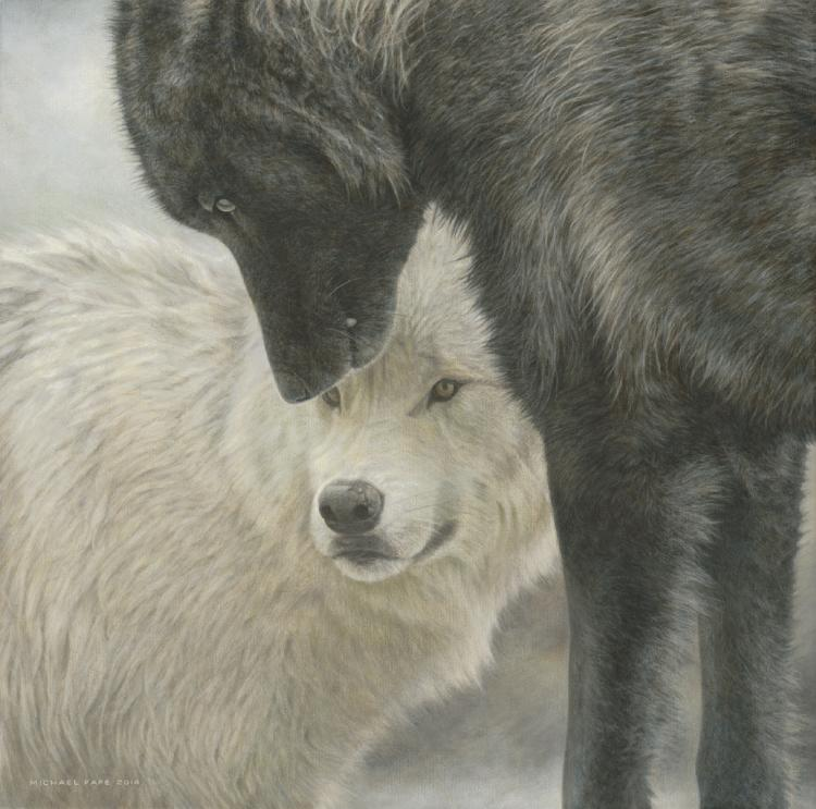 Strength & Wisdom - Grey Wolves, original wildlife painting is avaialble.  Limited edition giclée wildlife prints on paper & canvas in two sizes are available by Canadian wildlife artist Michael Pape.