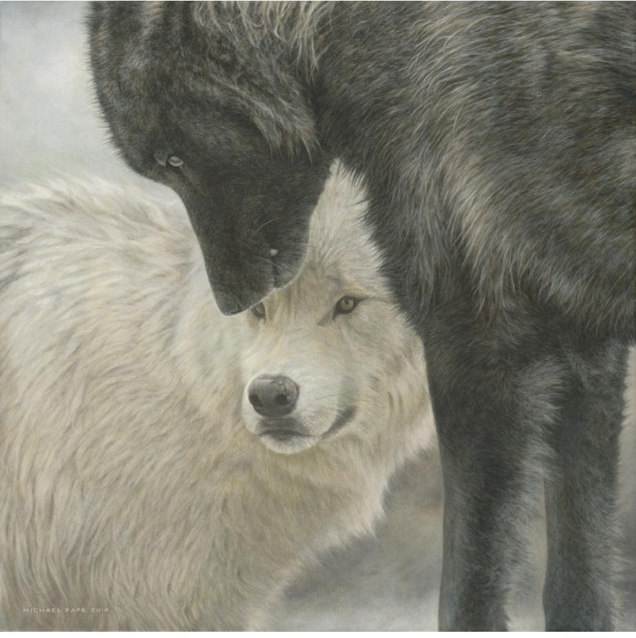 Strength & Wisdom - Grey Wolves, original wildlife painting & limited edition giclée wildlife prints on paper & canvas in two sizes are available by Canadian wildlife artist Michael Pape.