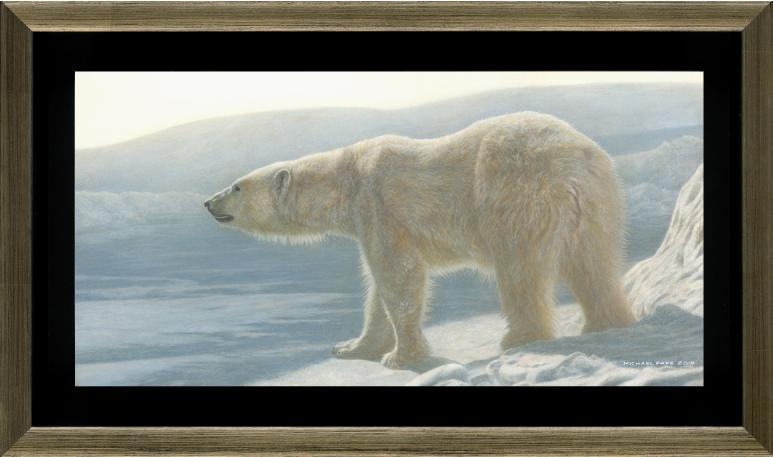 Buy this original Polar Bear Painting and or limited edition prints or giclée limited edition print of the Polar Bear titled Into The Light by Canadian Wildlife Artist Michael Pape.