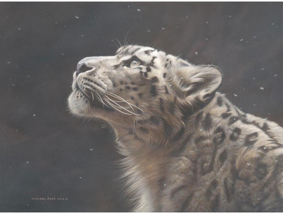 Silence Speaks – Snow Leopard, original acrylic painting on canvas is sold. Limited edition giclée wildlife prints are available in three sizes on paper & canvas by Canadian wildlife artist Michael Pape.