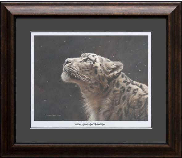 Silence Speaks – Snow Leopard, framed limited edition giclée wildlife prints are available in three sizes on water colour paper by Canadian wildlife artist Michael Pape.