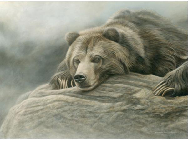 Silent Plea - Grizzly, limited edition giclée wildlife prints are available on paper & canvas in two different sizes. They are for sale by Canadian wildlife artist Michael Pape.