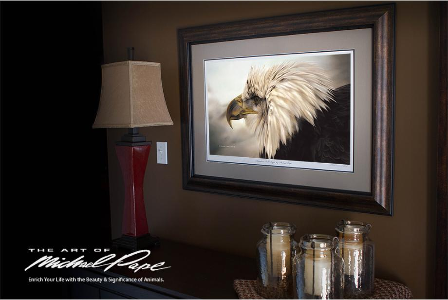 "© Immature Bald Eagle by Canadian Wildlife Artist Michael Pape, Large Framed Giclée on Watercolour Paper with Non Glare Glass, Image Size -19"" x 31""."